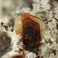 Biotite & Zircon