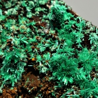 Azur Minerals: 13 Mar - 20 Mar 2019
