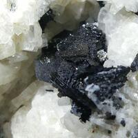 Nosean Sanidine Pyroxene Group On Biotite