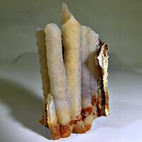 Chalcedony Psm Fossil Equisetum