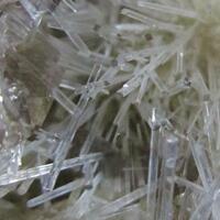 Natrolite Psm Fossil Wood & Calcite