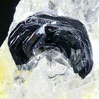 Iron Rose On Rock Crystal
