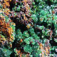 Cuprian Adamite Conichalcite & Goethite