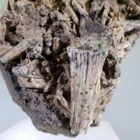 Scapolite With Andradite