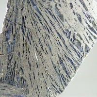 Feather Pyrite