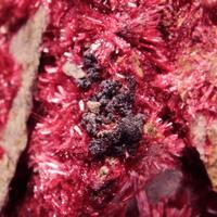 Erythrite With Cobaltian Mansfieldite Heterogenite & Smolyaninovite