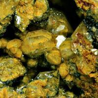 Eisenkiesel Psm Fossil Bacteria