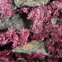 Erythrite With Pyrrhotite & Heterogenite