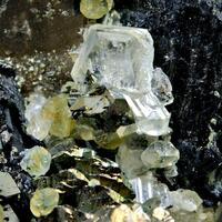 Topaz Fluorite Wolframite & Marcasite On Smoky Quartz