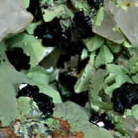 Olivenite & Chenevixite
