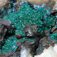Reichenbachite & Goethite On Quartz