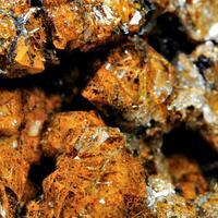 Eisenkiesel Psm Fossil Archaea Bacteria On Stromatolite