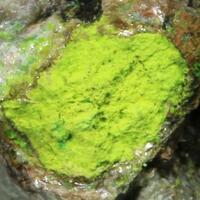Sengierite & Uraninite