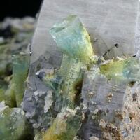 Aquamarine & Schorl On Quartz