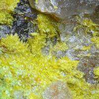 Phosphuranylite & Metatorbernite