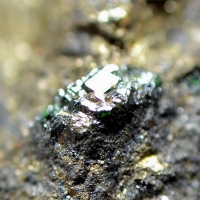 Goldmanite