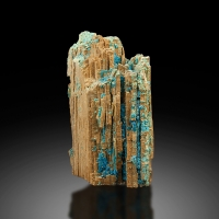 Chalcanthite In Fossil Wood