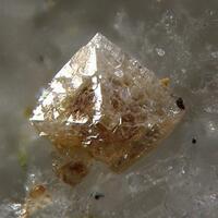 Xenotime-(Y) & Pyrochlore