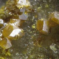 Bismutoferrite & Pucherite