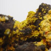 Cyrilovite & Leucophosphite