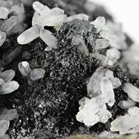 Plinius - Metalliferous & Natives: 02 Dec - 09 Dec 2018