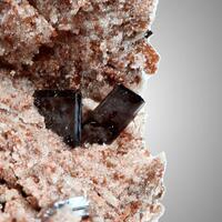 Pseudobrookite With Fluoro-magnesio-hastingsite