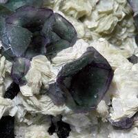 Fluorite On Gilbertite