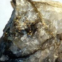 Gold & Tellurobismuthite