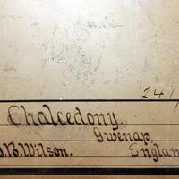 Chalcedony Psm Calcite