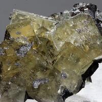 Fluorite & Brianyoungite