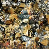Chalcopyrite On Sphalerite