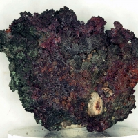 Native Copper & Cuprite
