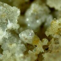 Challacolloite With Cotunnite & Uklonskovite