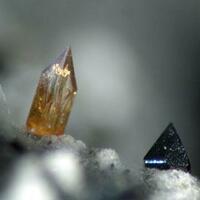 Titanite With Ferro-hornblende