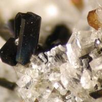 Ferro-hornblende & Titanite