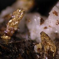 Gold & Sphalerite