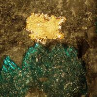 Gold Atacamite & Boleite