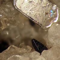 Allanite-(Ce) & Sodalite