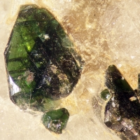Fluornatromicrolite & Muscovite