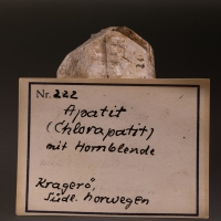 Chlorapatite & Hornblende