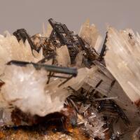 Rutile Var Sagenite & Aragonite