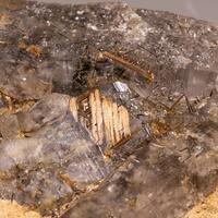 Rutile Var Sagenite & Rock Crystal