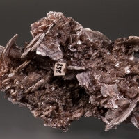 Roger Lang Minerals: 19 Nov - 26 Nov 2020
