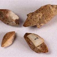 Calcite Psm Gaylussite