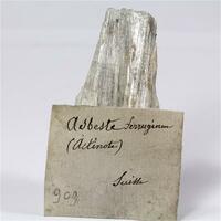 Ferro-actinolite