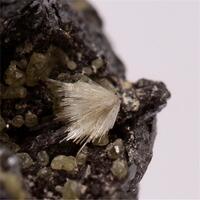 Klebelsbergite Stibnite Peretaite Valentinite & Native Sulphur