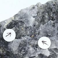 Gold In Quartz & Stibnite