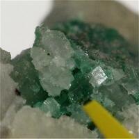 Sabelliite