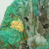 Gold With Chrysocolla & Atacamite & Quartz
