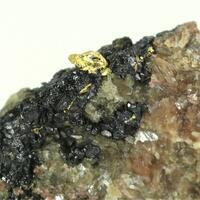 Gold With Uraninite Var Pitchblende